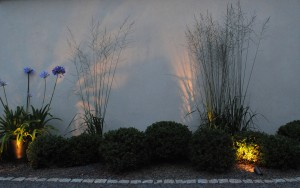 Using spike spotes to light garden foliage